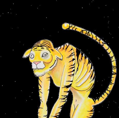 final tiger